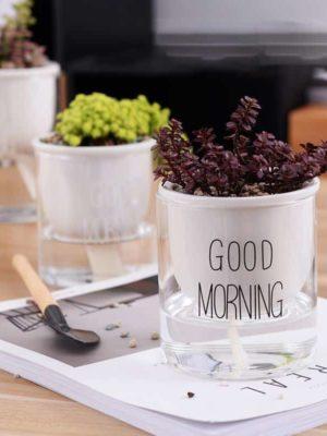 Automaton Morning Flower Vase Enjoy Gorgeous Deals Reviews Rosseta Home