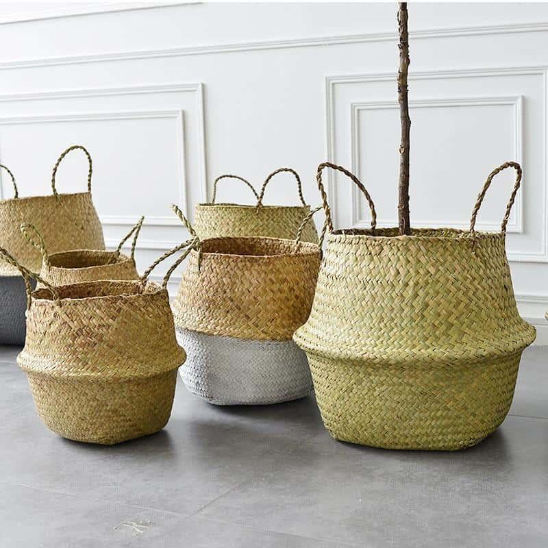 Linnéa by Sebastian Odenberg / Basket