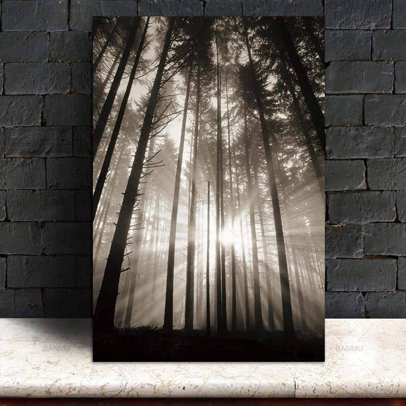 Roll In The Deep   The Forest Canvas print - Wall Art Forest One / 60X90cm