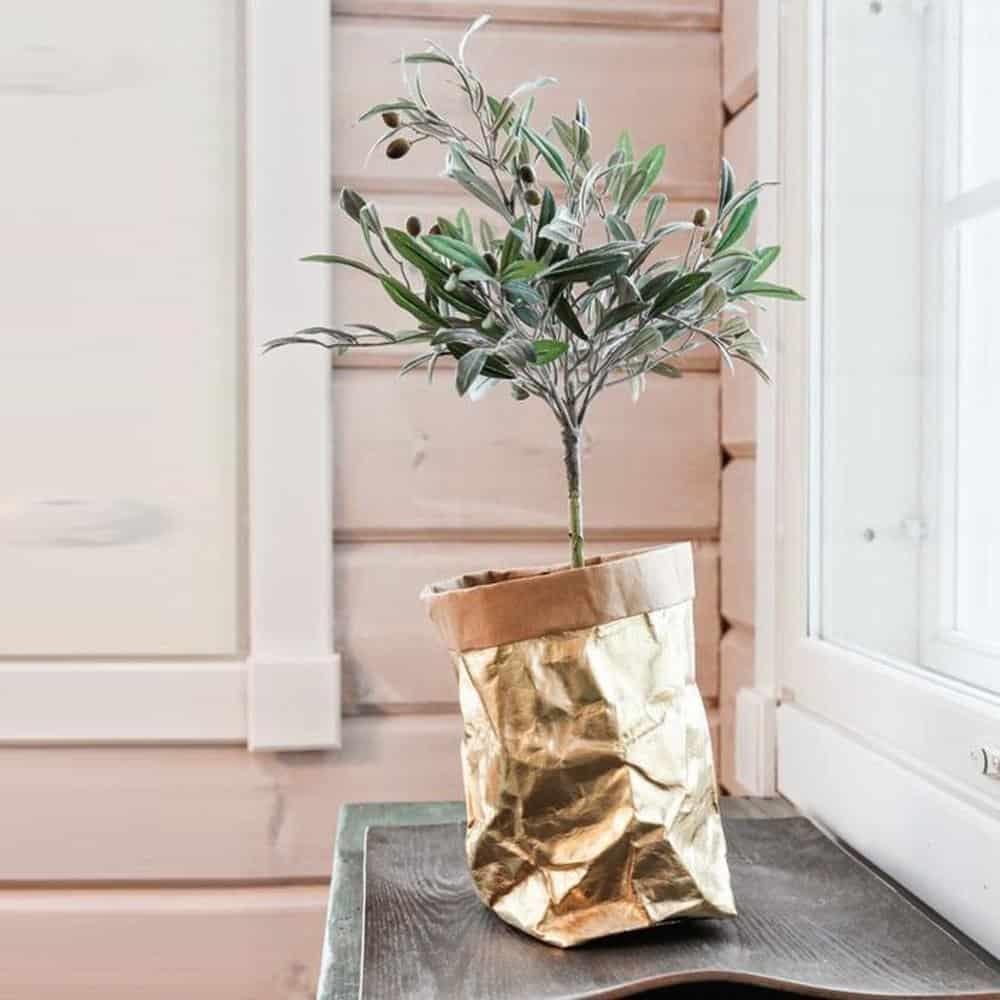 Floweri Vase/Storage Vase