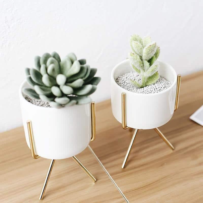 Horatio Jacobsson / Ceramic Flower Planters