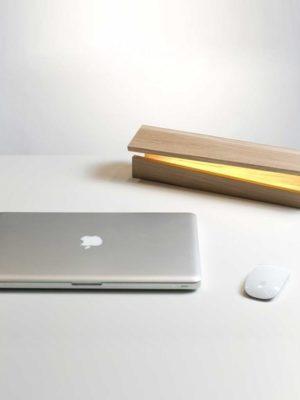 Sha Kimoto Wood Base Floor/Table lamp LED