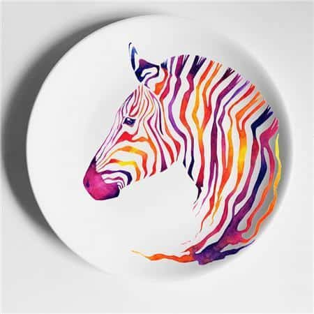 Zebra from Africa