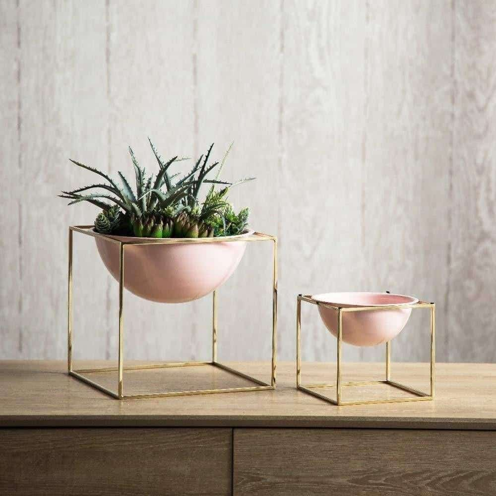 Waterfront Rose Cube / Plant Pot