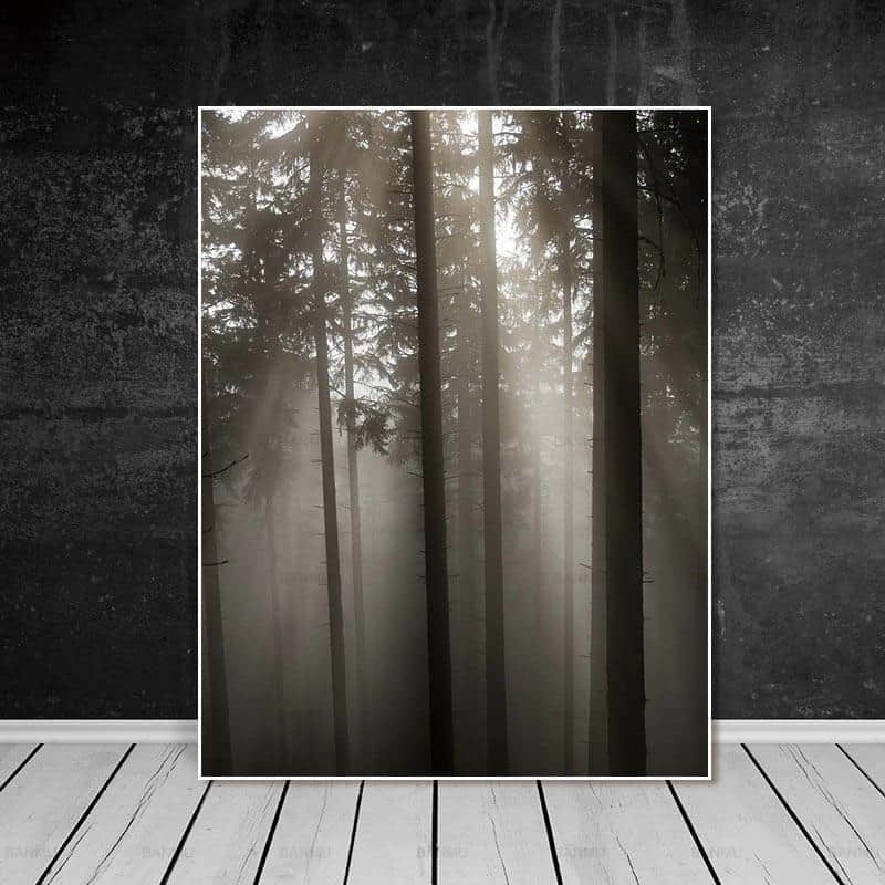 Roll In The Deep   The Forest Canvas print - Wall Art Forest Two / 60X90cm