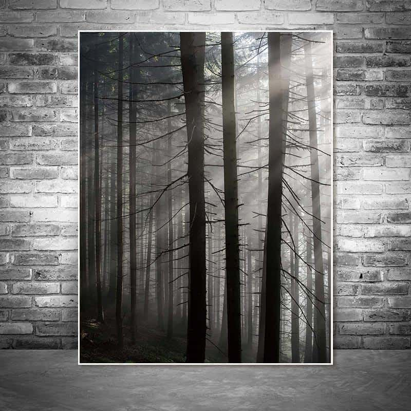 Roll In The Deep   The Forest Canvas print - Wall Art Forest Three / 60X90cm