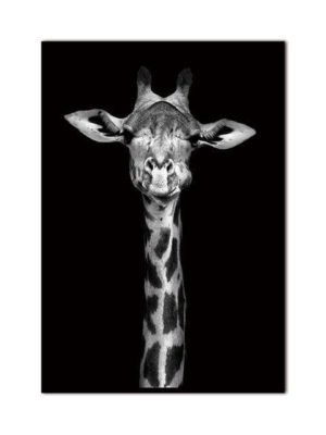 Giraffe Is Looking At Me! | Unframed Canvas Art
