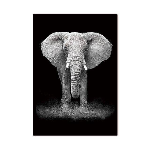 Charming Elephant