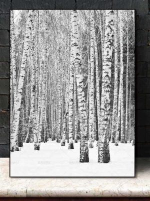 Deep Winter Forest Inspirational | Unframed Canvas Art