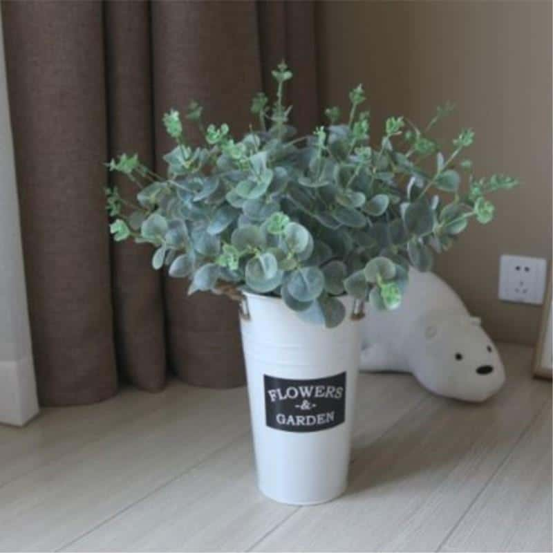 Eucalyptus by Una Hubmann